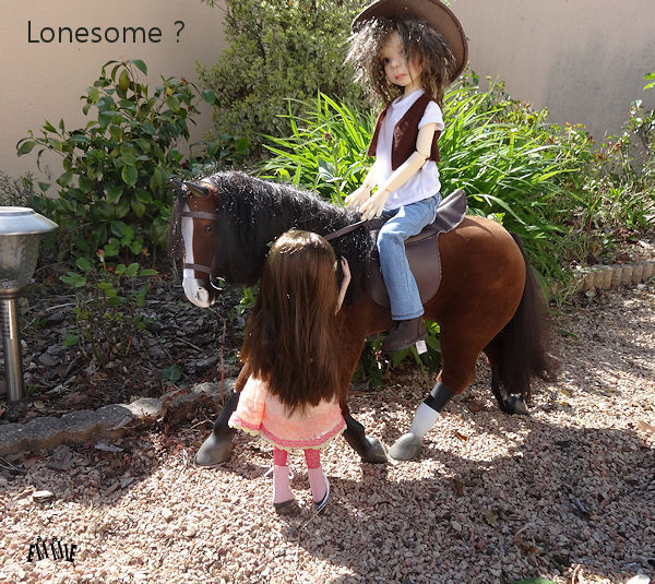 Lonesome cowboy... 649