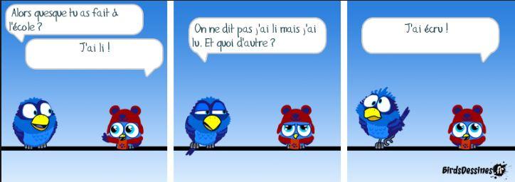 Les Birds Dessinés - Page 3 Aa00b11