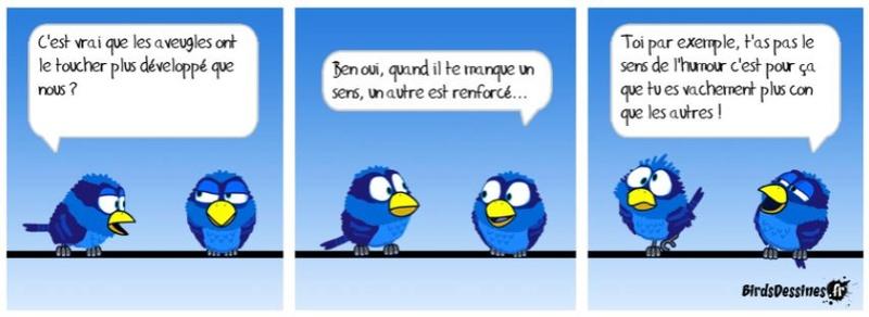 Les Birds Dessinés - Page 4 Aa00b210