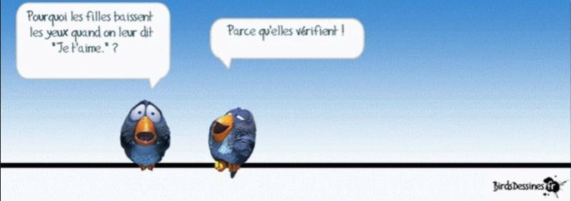 Les Birds Dessinés - Page 3 Aa0210