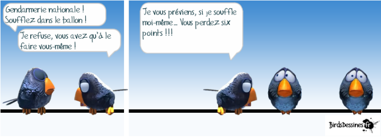 Les Birds Dessinés - Page 3 Bird010