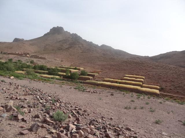 Retour Raid Transargho 2017 by MORAIDS Dsc03426