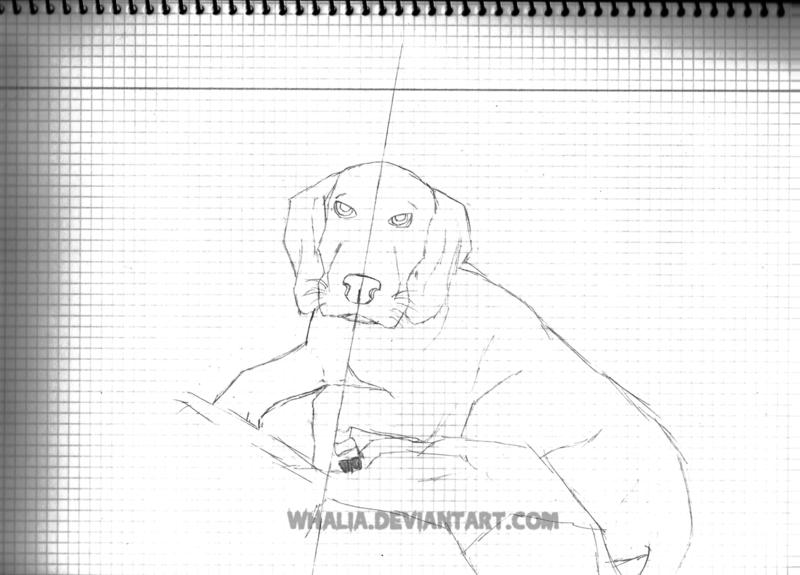 Mi Galería [Whalia] - Página 23 Sketch10