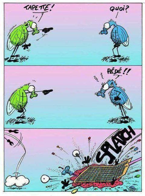 Les Images drôles - Page 8 618_5810