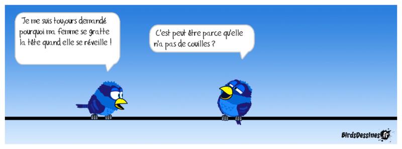 Les Images drôles - Page 8 Gavera10