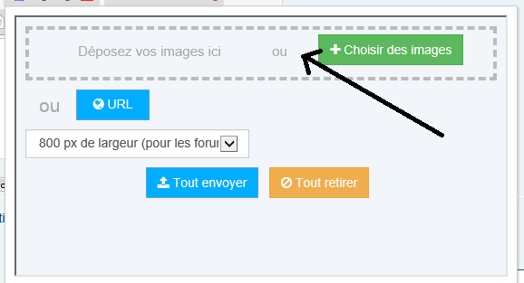 TUTORIEL METTRE IMAGE (OU PHOTO) SUR LE FORUM Insert11