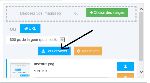 TUTORIEL METTRE IMAGE (OU PHOTO) SUR LE FORUM Insert13