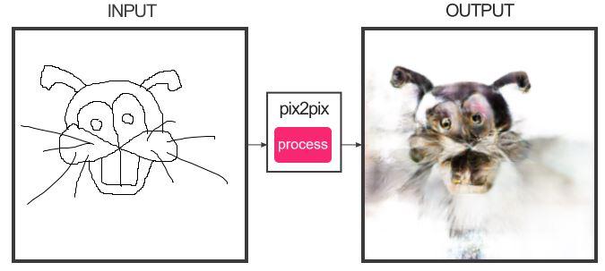 Générateur de chats Lapin10