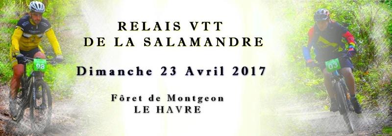 [Dim 23 Avril 2017] Relais de la Salamandre - 2° Edition 14151910