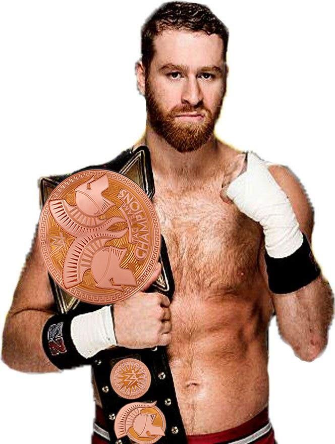 Roster WWE Zayn10