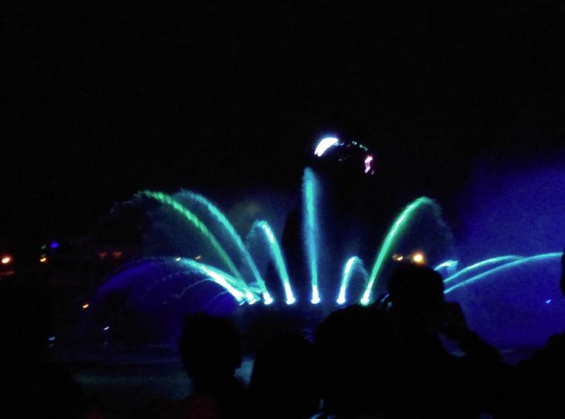 4,5 jours au coeur de la magie à Tokyo Disney Resort juin 2016 - Page 5 Imag0310