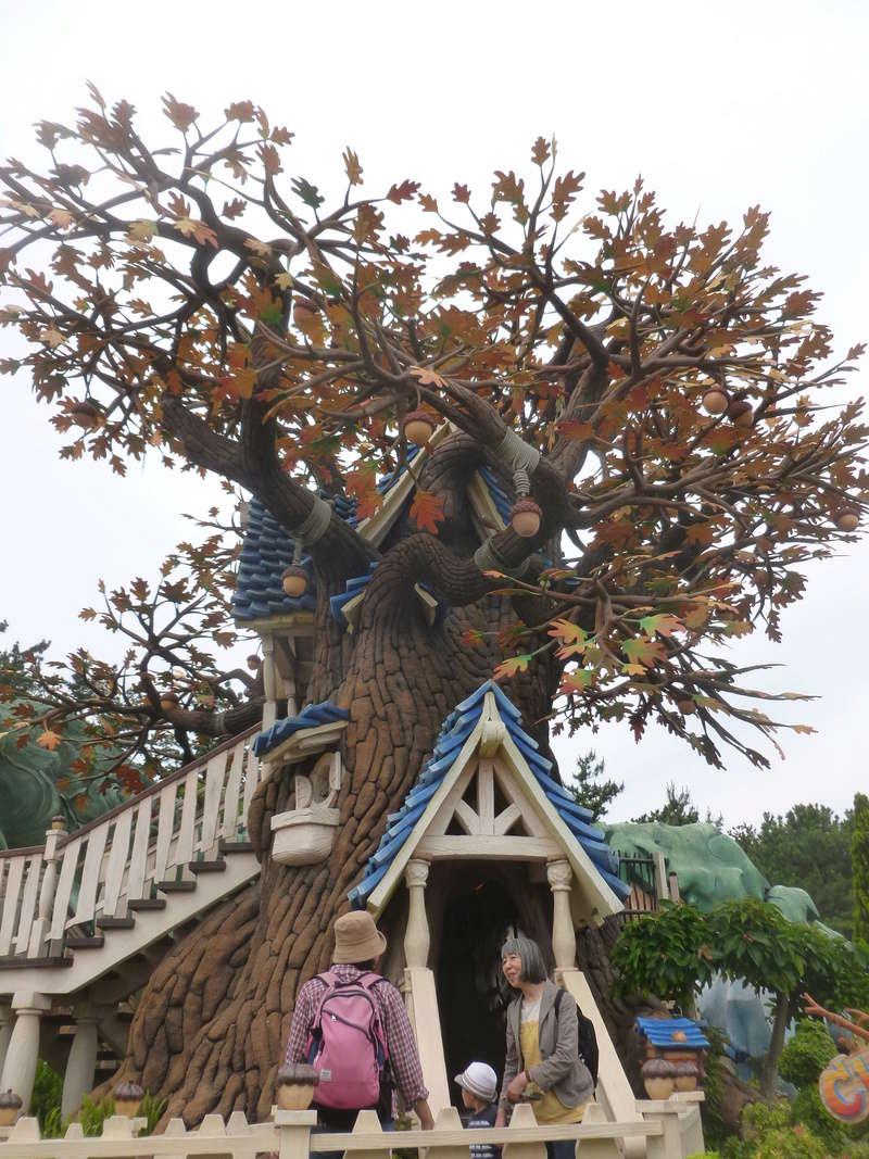 4,5 jours au coeur de la magie à Tokyo Disney Resort juin 2016 - Page 5 P1070712