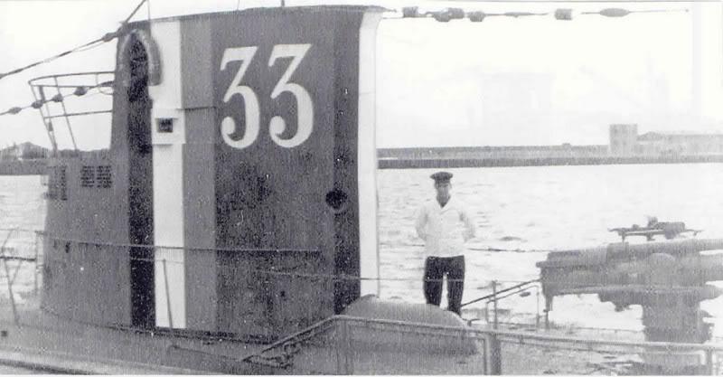 Un loup gris dans l'atlantique U-33-110