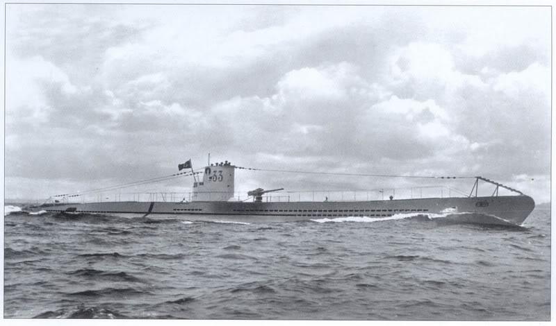 Un loup gris dans l'atlantique U-33-v10