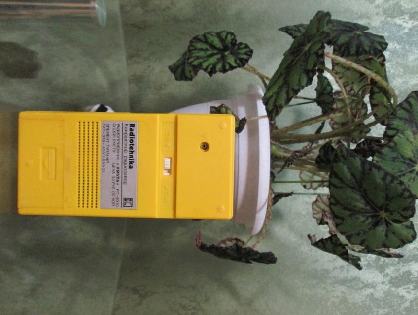Бытовые радиоприёмники СССР Img_7815
