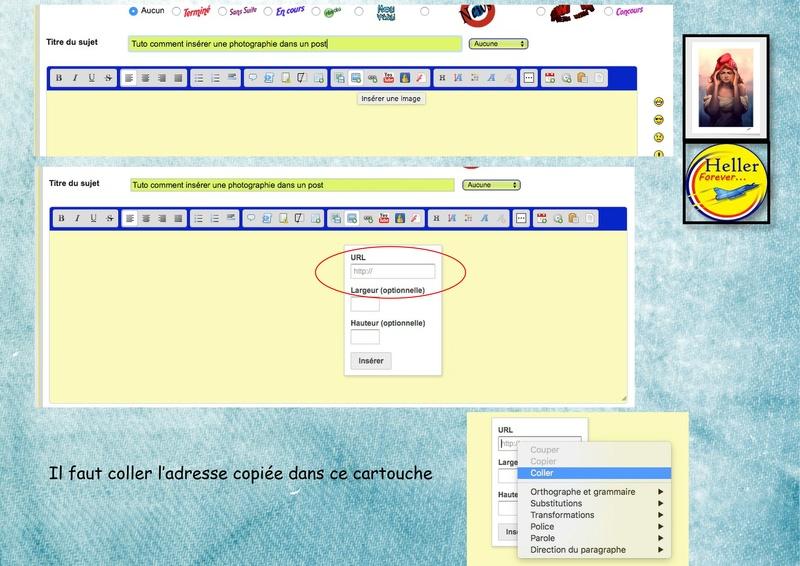 Comment insérer une image dans un post à partir de SERVIMG ...  01410
