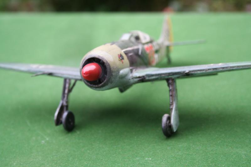 Pilatus PC-6/B2-H4 -. Roden 1/48 - Par fombec6 - Fini. - Page 2 Img_6111