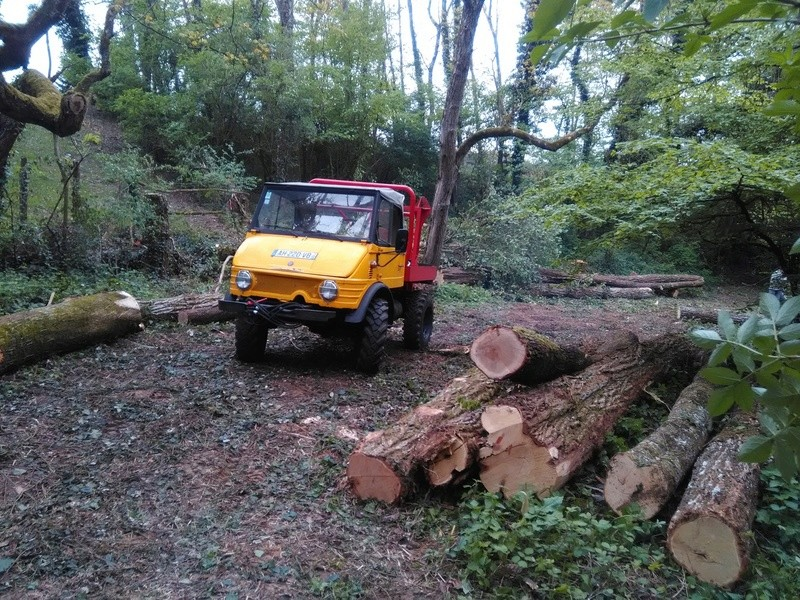 mon 421 forestier - Page 5 Img_2015