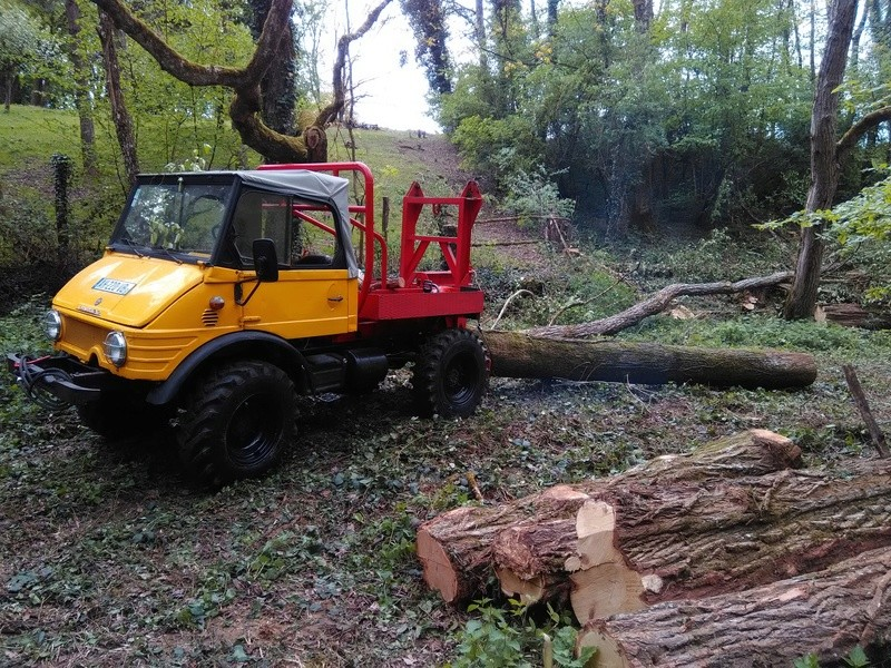 mon 421 forestier - Page 5 Img_2016