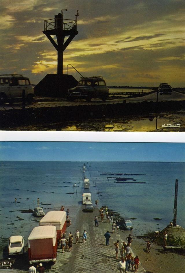 Passage du GOIS, Vendée Img45910