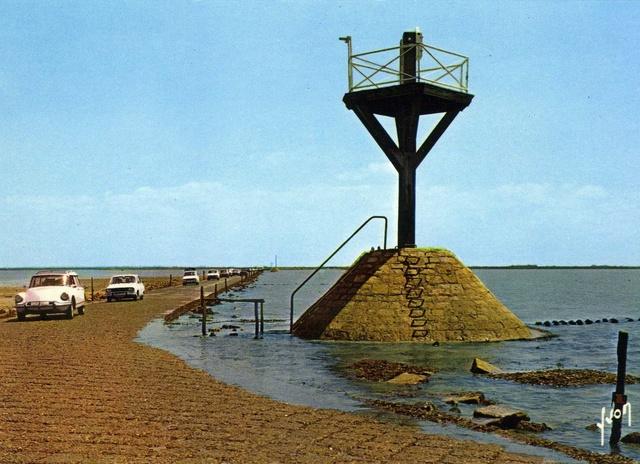 Passage du GOIS, Vendée Img46010