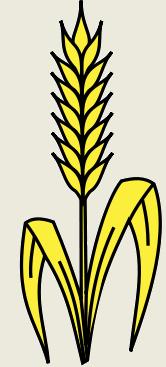 """Présentation de la Coopérative Agricole """" Le Jardin de Déméter"""" Coopyr10"""