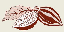Présentation de Skondras Cacao Skondr10