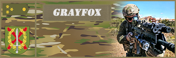 Arma 3 Update 1.88 (Multiplayer Compatibility Fixes) Grayfo10