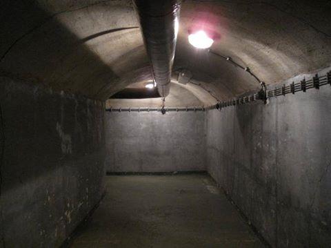 Bunker 17883610