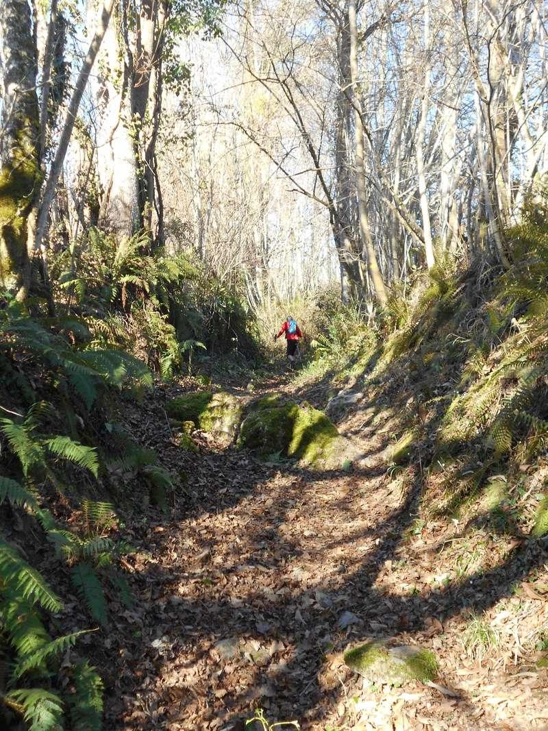 Sortie trail, Arbas le dimanche 26/02/2017 Dscn0218