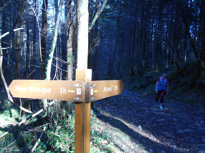 Sortie trail, Arbas le dimanche 26/02/2017 Dscn0222