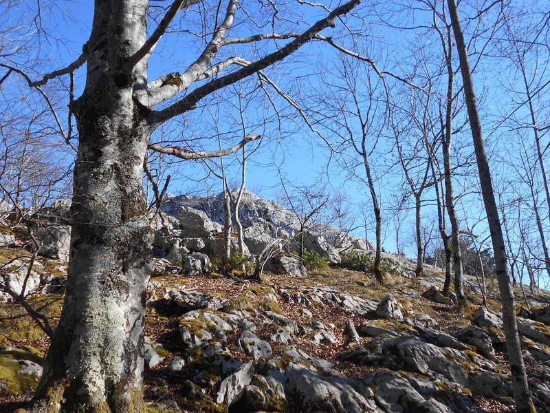 Sortie trail, Arbas le dimanche 26/02/2017 Dscn0223
