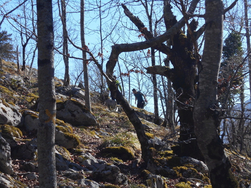 Sortie trail, Arbas le dimanche 26/02/2017 Dscn0224