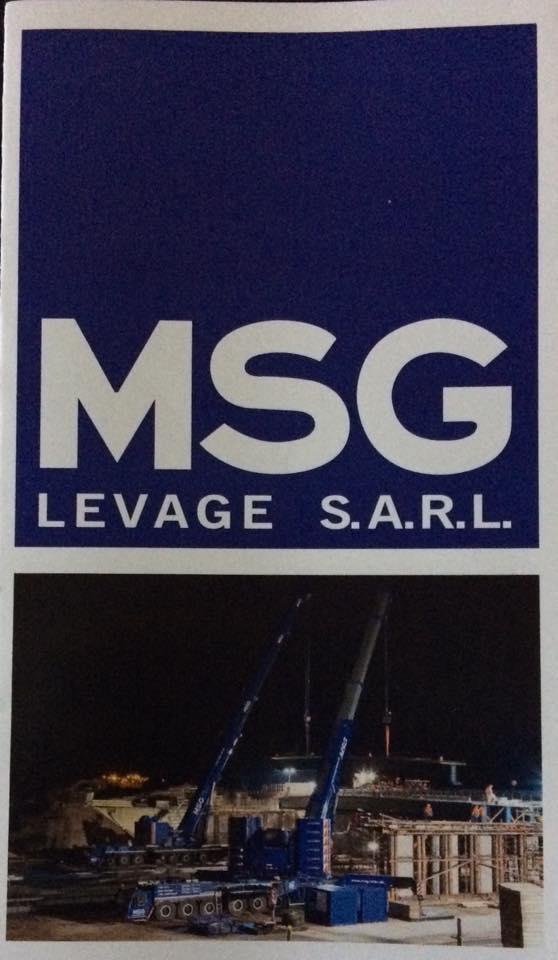 Les grues de MSG Kehl (Allemagne) - Page 21 18118511