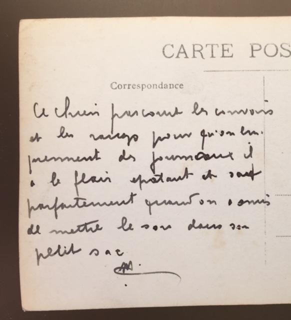 Chien porteur de journaux 1915 Img_0116