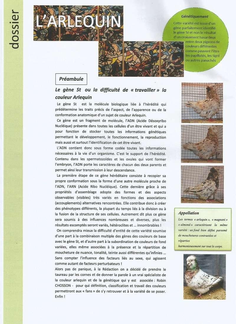 DOSSIER SUR L'ARLEQUIN (  PAR Mr ROBIN CHOSSON )  1410