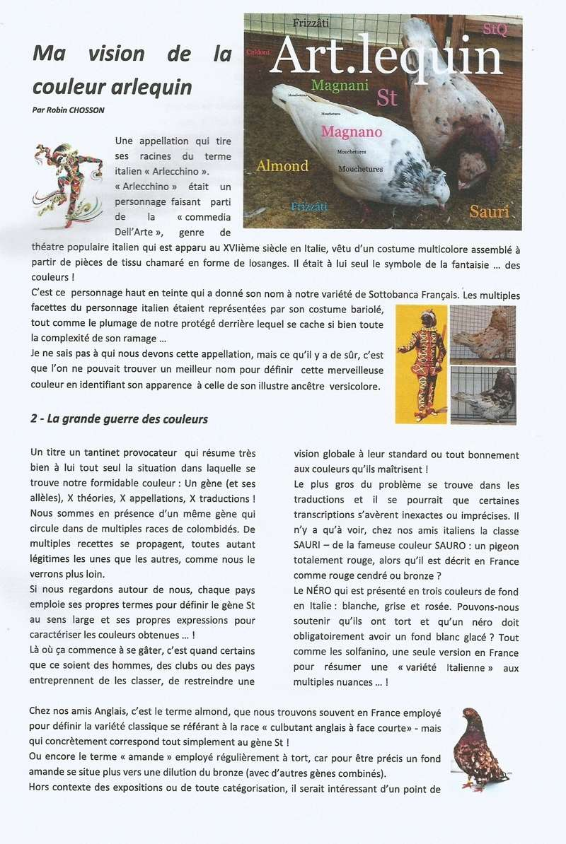 DOSSIER SUR L'ARLEQUIN (  PAR Mr ROBIN CHOSSON )  1510