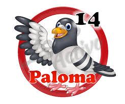SOLO 3 FIJOS! Envia RULETA al 5515 gana en ruleta activa de oriente Paloma10