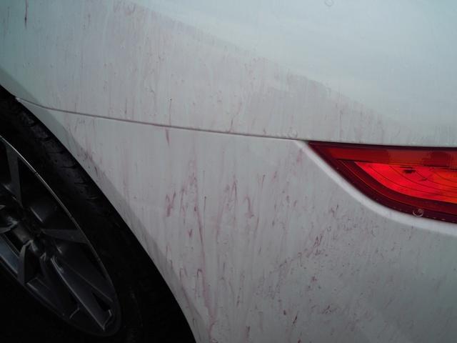 Lavaggio auto nuova colore bianco madreperla Image10