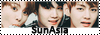 Sun Asia Bouton10