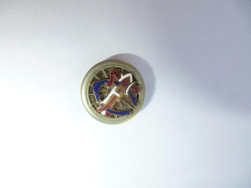 vieux fanion et insigne du TCF (touring club de France )  P1090212