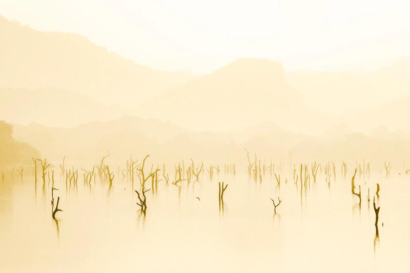 Amaya Lake, Sri Lanka  -1050310