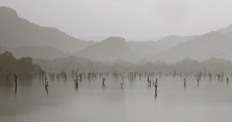 Amaya Lake, Sri Lanka  P1050310