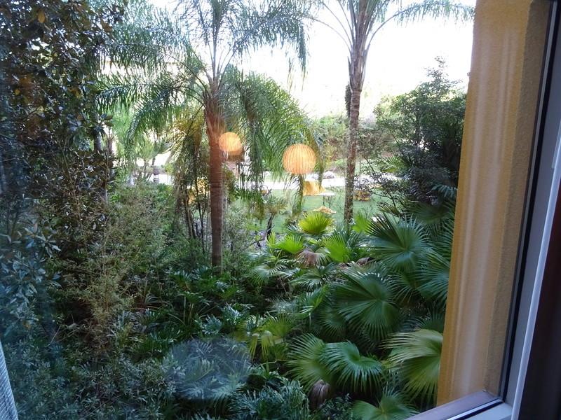 TR Honeymoon in Florida novembre 2016 (WDW-SW-DC-KSC-USF-NBA-Miami-Everglades-Keys) (dernière MàJ: 09/04/2017) Terminé - Page 8 Dsc03016