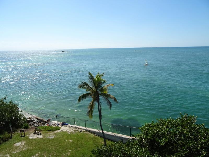 TR Honeymoon in Florida novembre 2016 (WDW-SW-DC-KSC-USF-NBA-Miami-Everglades-Keys) (dernière MàJ: 09/04/2017) Terminé - Page 10 Dsc03630
