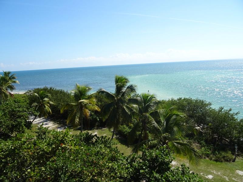 TR Honeymoon in Florida novembre 2016 (WDW-SW-DC-KSC-USF-NBA-Miami-Everglades-Keys) (dernière MàJ: 09/04/2017) Terminé - Page 10 Dsc03636