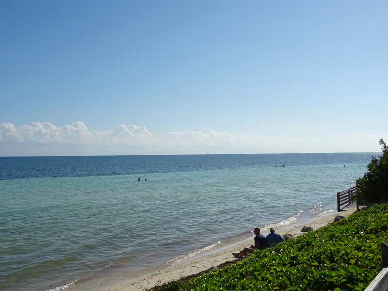 TR Honeymoon in Florida novembre 2016 (WDW-SW-DC-KSC-USF-NBA-Miami-Everglades-Keys) (dernière MàJ: 09/04/2017) Terminé - Page 10 Dsc03716