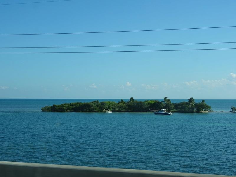 TR Honeymoon in Florida novembre 2016 (WDW-SW-DC-KSC-USF-NBA-Miami-Everglades-Keys) (dernière MàJ: 09/04/2017) Terminé - Page 10 Dsc03719