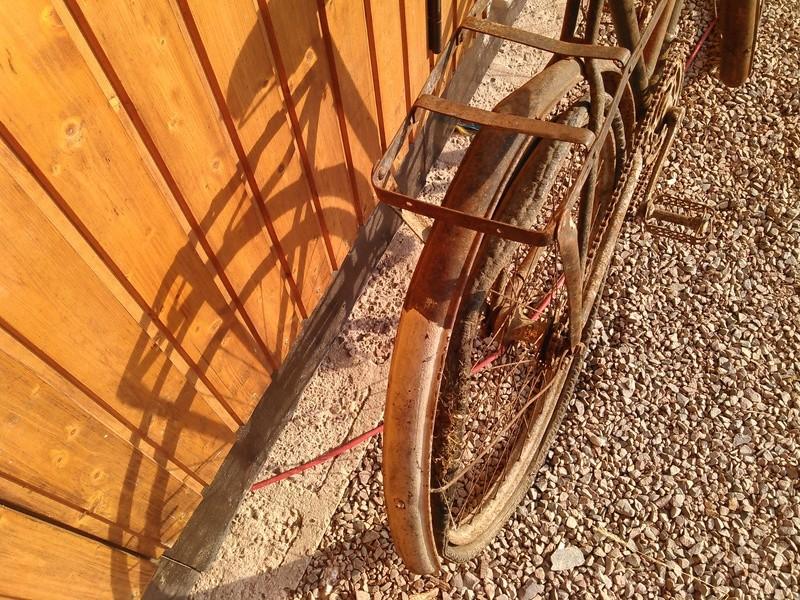 Peugeot dame à dents sautées 1905 Kimg0187