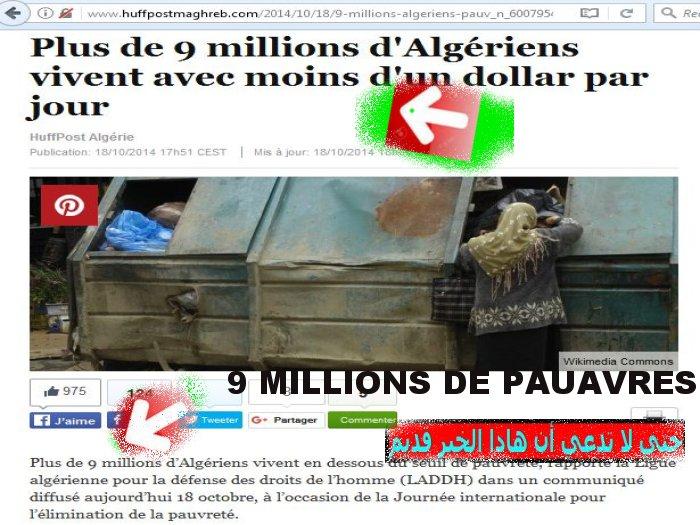 9 millions d'Algeriens vivent au pain nu ! تسعة مليون جزائري يكتفون بالخبز والماء Zz210